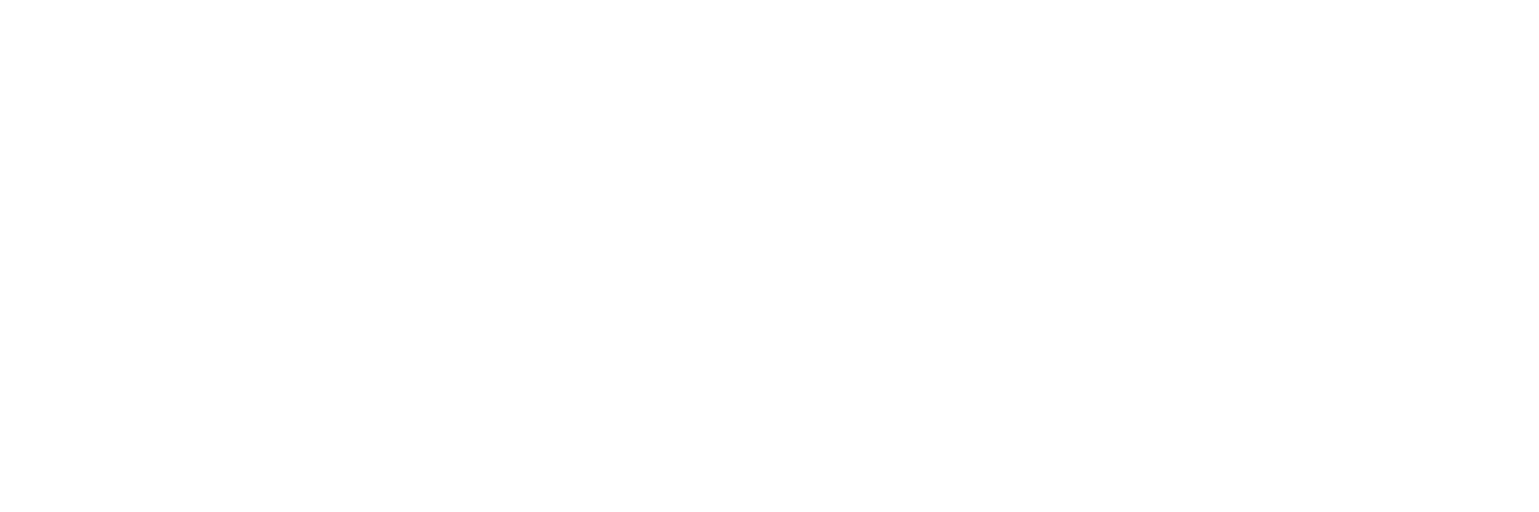 Natura Foundation Logo